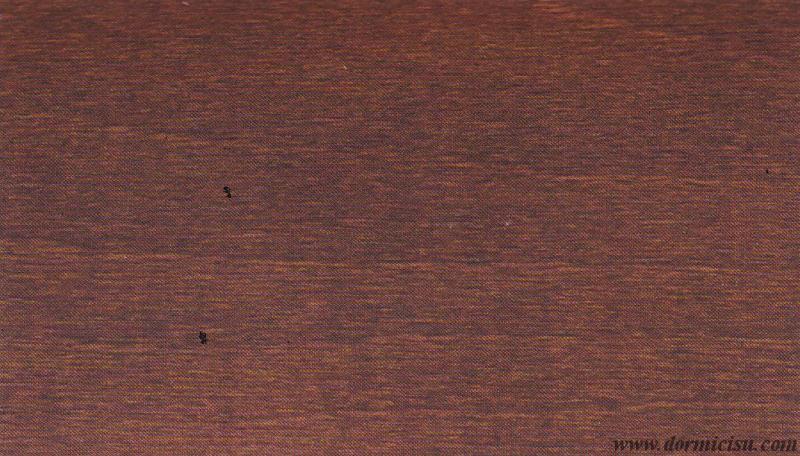 colore struttura in legno-NOCE